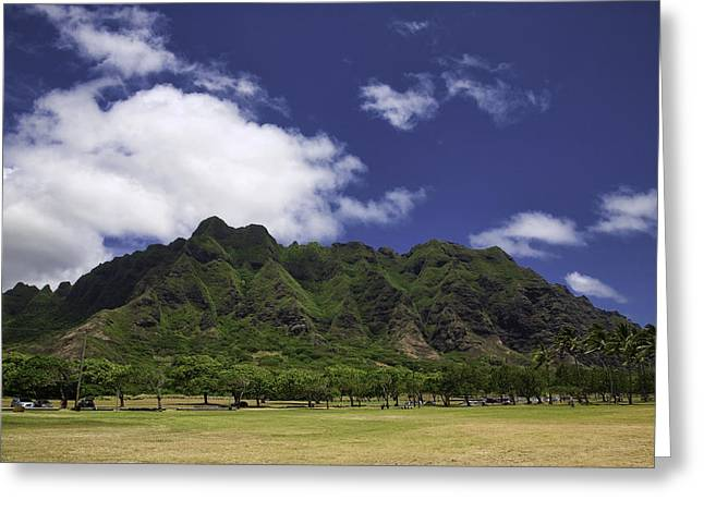 Postcard From Oahu Greeting Card by Joanna Madloch