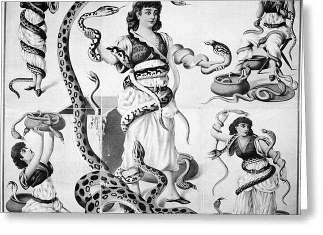 Poster Snake Charmers Greeting Card