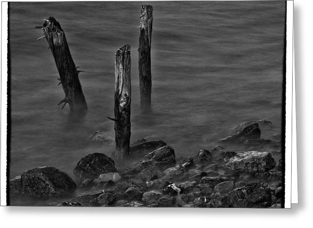 Posts In The Water Greeting Card by Craig Brown