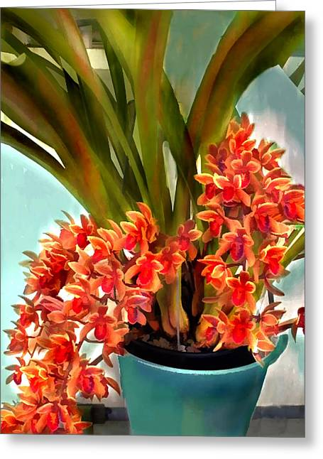 Pot Of Rust Orange Orchids Greeting Card by Elaine Plesser