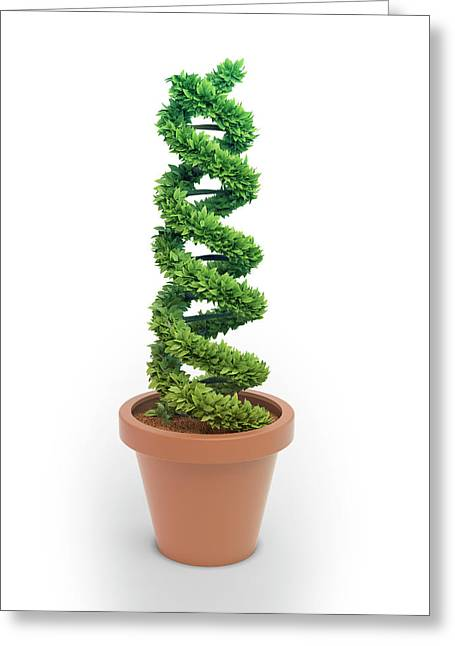 Pot Plant In Shape Of Dna Greeting Card