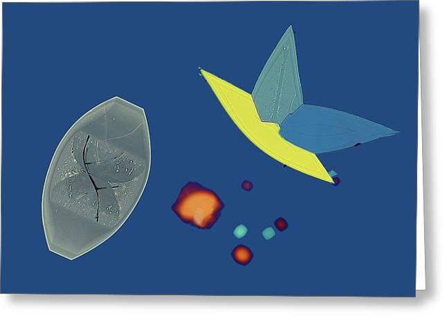 Potassium Bitartrate Crystals Greeting Card