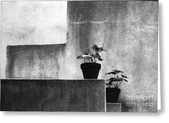 Greeting Card featuring the photograph Pots by Steven Macanka