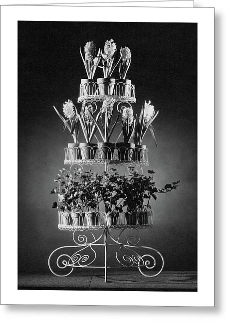 Potted Flowers On A Wrought Iron Stand Greeting Card