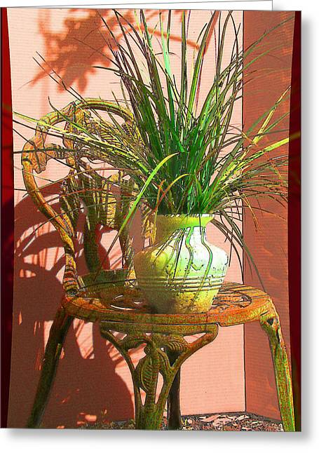 Potted Plant In Chair No 3 Greeting Card by Ginny Schmidt