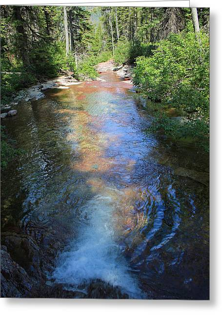 Greeting Card featuring the photograph Pouring Into Morning Light by Kathleen Scanlan