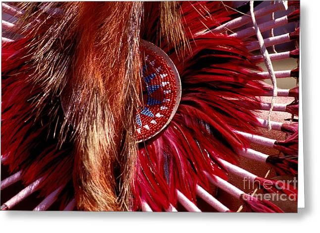 Pow-wow Costume Greeting Card by Paul W Faust -  Impressions of Light