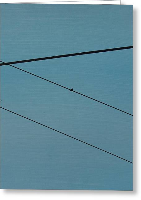 Power Lines 03 Greeting Card by Ronda Stephens