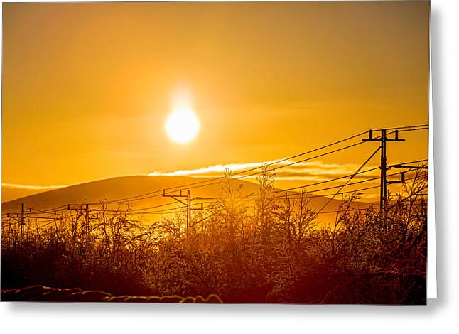 Power Lines And Trees In The Frozen Greeting Card
