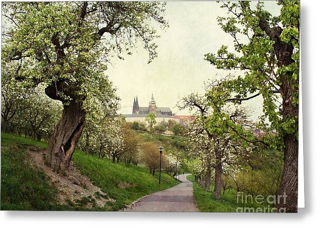 Prague In Bloom I Greeting Card