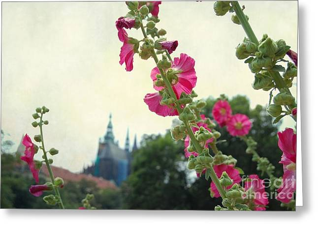 Prague In Bloom V Greeting Card