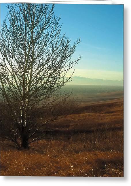 Prairie Autumn 5 Greeting Card
