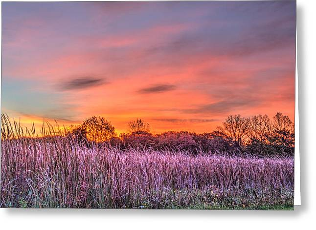 Moraine Hills State Park Moments Before Sunrise Greeting Card by Roger Passman