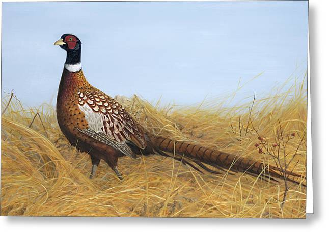 Prairie Splendor Greeting Card