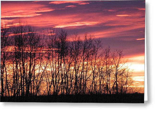 Prairie Sunrise Greeting Card by Susan Copley