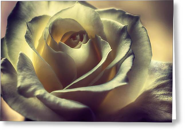 Prayer Candle Rose Greeting Card