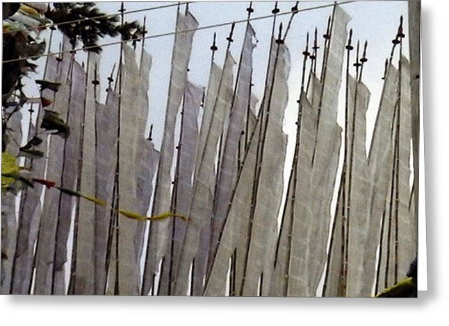Prayer Flags Greeting Card by Patrick Morgan