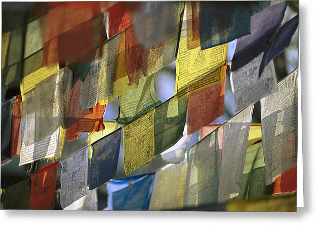 Prayer Flags Greeting Card by Richard Berry