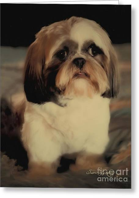 Precious Shih Tzu Greeting Card