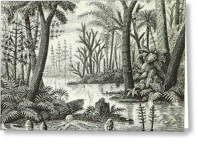 Greeting Card featuring the photograph Prehistoric Flora, Carboniferous by British Library