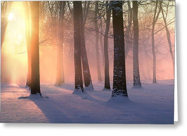 Presence Of Light Greeting Card