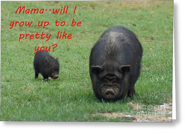 Pretty As A Pig Greeting Card by B Wayne Mullins