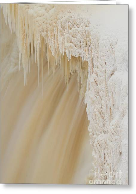 Pretty Alexandra Falls Greeting Card by Lisa Killins