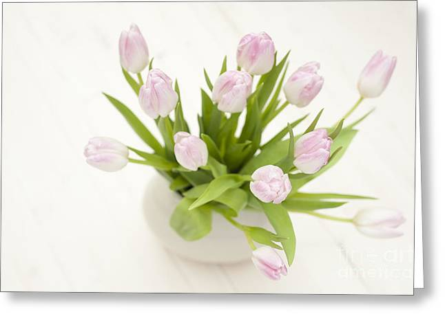 Pretty In Pink Greeting Card by Anne Gilbert