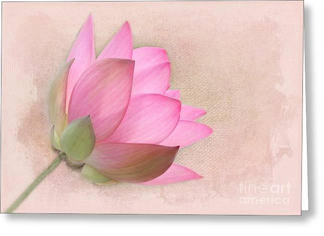 Pretty In Pink Lotus Blossom Greeting Card by Sabrina L Ryan