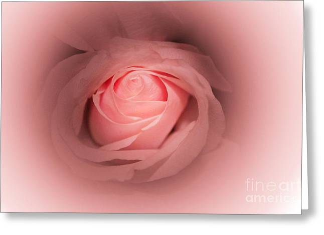 Pretty In Pink Rose Abstract Greeting Card