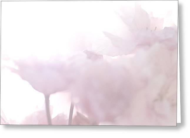 Pretty In Pink - The Whisper Greeting Card
