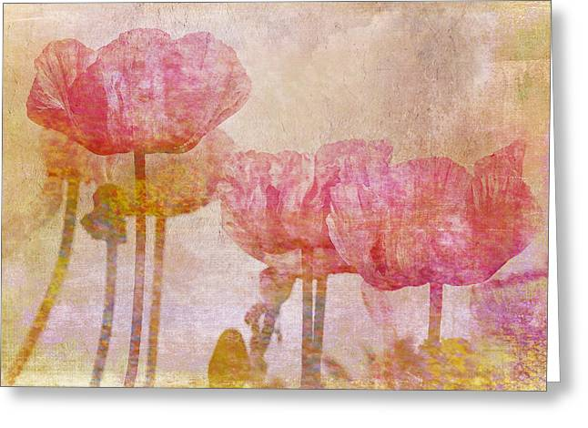Pretty Poppy Garden Greeting Card