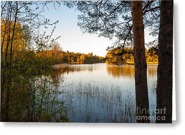 Pretty Spring Evening At The Lake Greeting Card