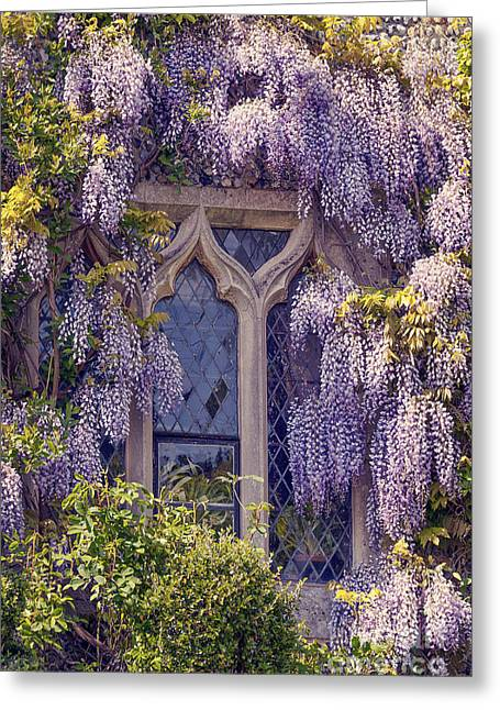 Pretty Window Greeting Card by Svetlana Sewell