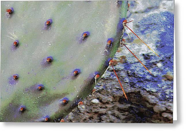 Prickly Pear Greeting Card by Joe Pratt
