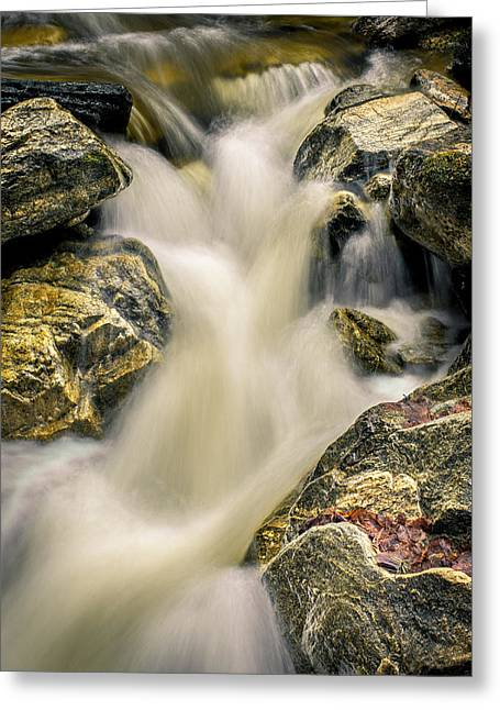 Priest Creek Greeting Card