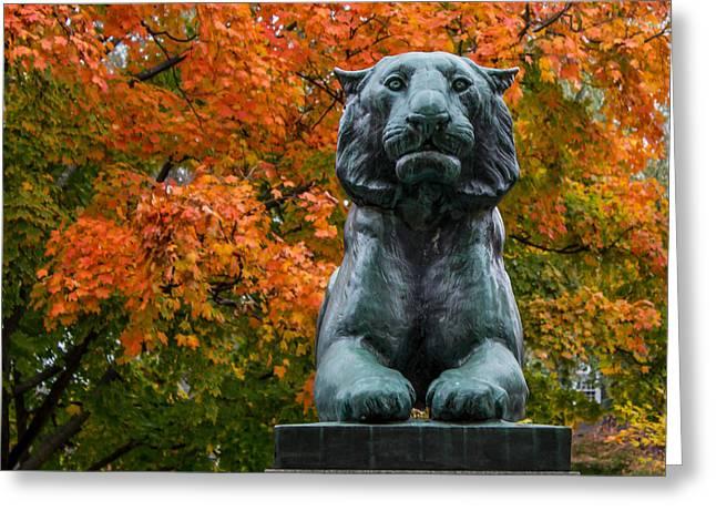 Princeton Tiger Greeting Card
