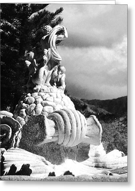 Greeting Card featuring the photograph Princeville Black And White by Alohi Fujimoto