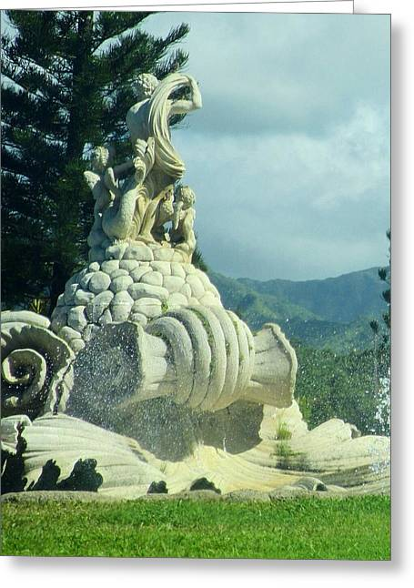 Greeting Card featuring the photograph Princeville Revisited by Alohi Fujimoto