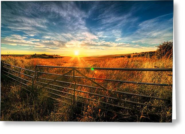 Private Field Greeting Card by Svetlana Sewell