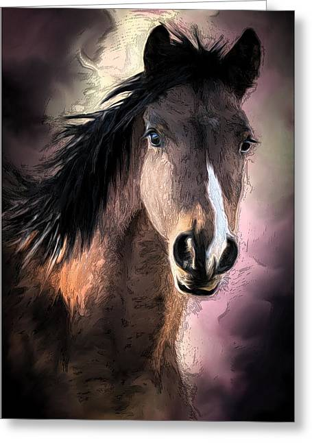 Profile Of A Horse Greeting Card by Ronel Broderick