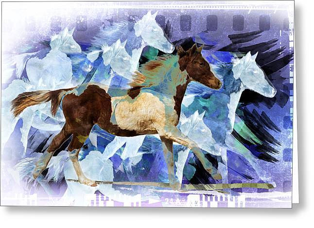 Profile Portrait Of A Pinto Horse Running Greeting Card