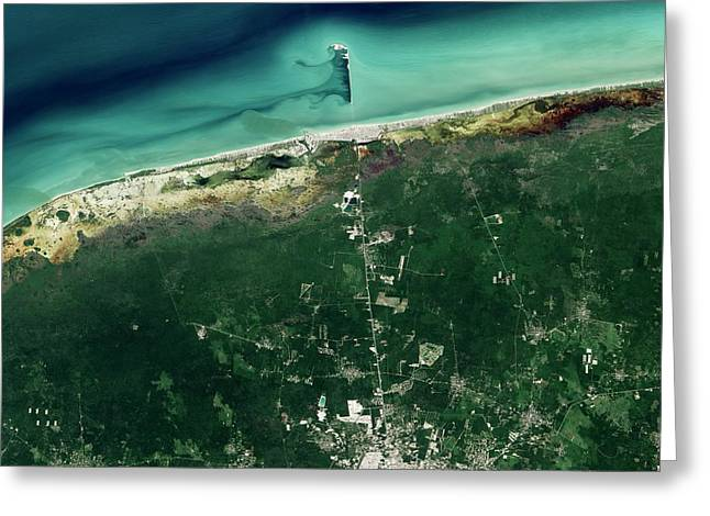 Progreso Pier Greeting Card by Nasa Earth Observatory