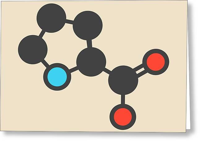 Proline Amino Acid Molecule Greeting Card
