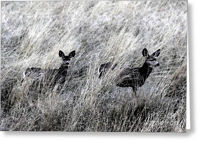 Protected Babies 1 Greeting Card by Brenda Henley