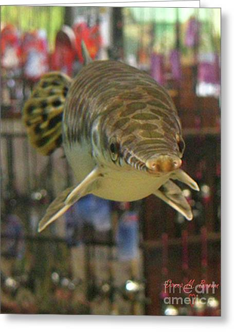 Greeting Card featuring the photograph Protected Gar by Donna Brown