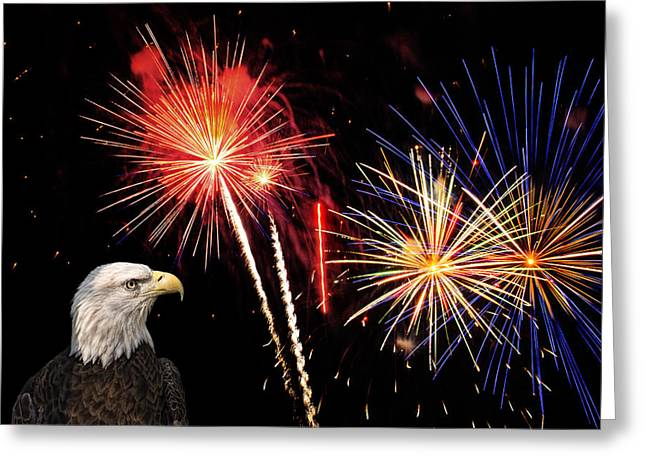 Proud And Free 3 Greeting Card