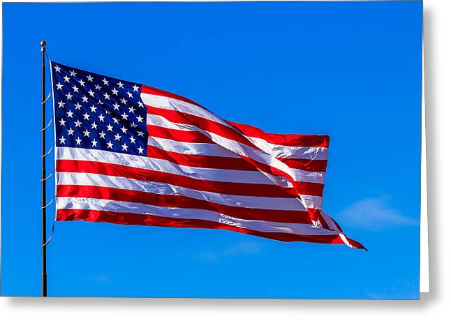 Proud And Free Greeting Card by Doug Long
