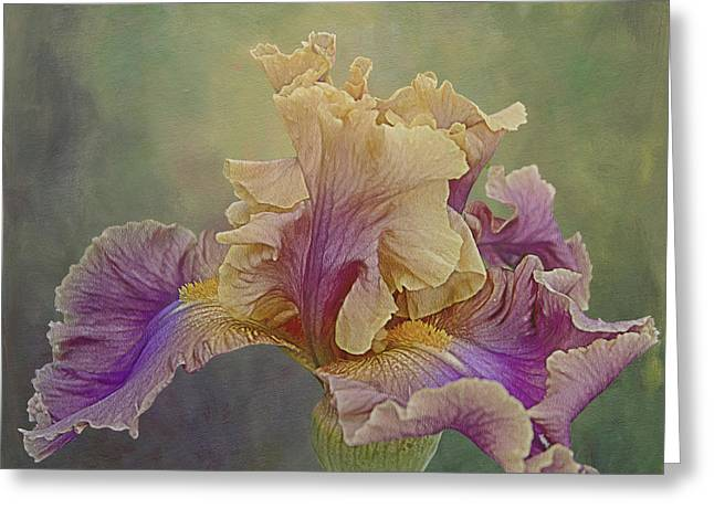 Proud Iris Greeting Card