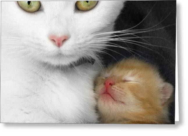 Proud Mother Greeting Card by Jo Collins